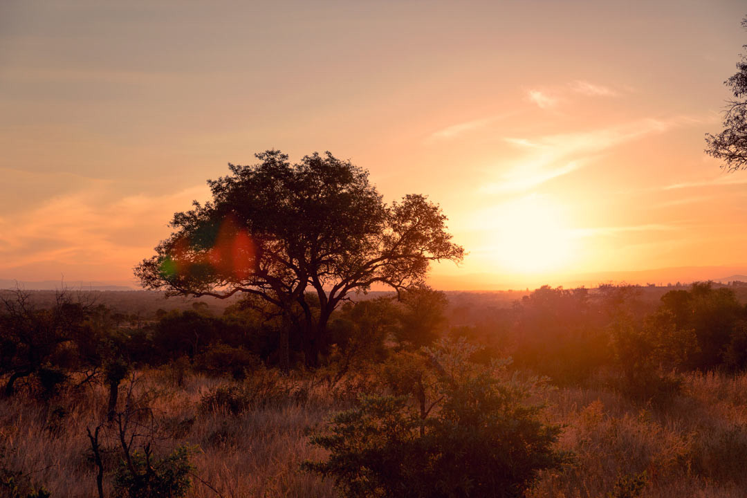 South African sunsets are simply beautiful.