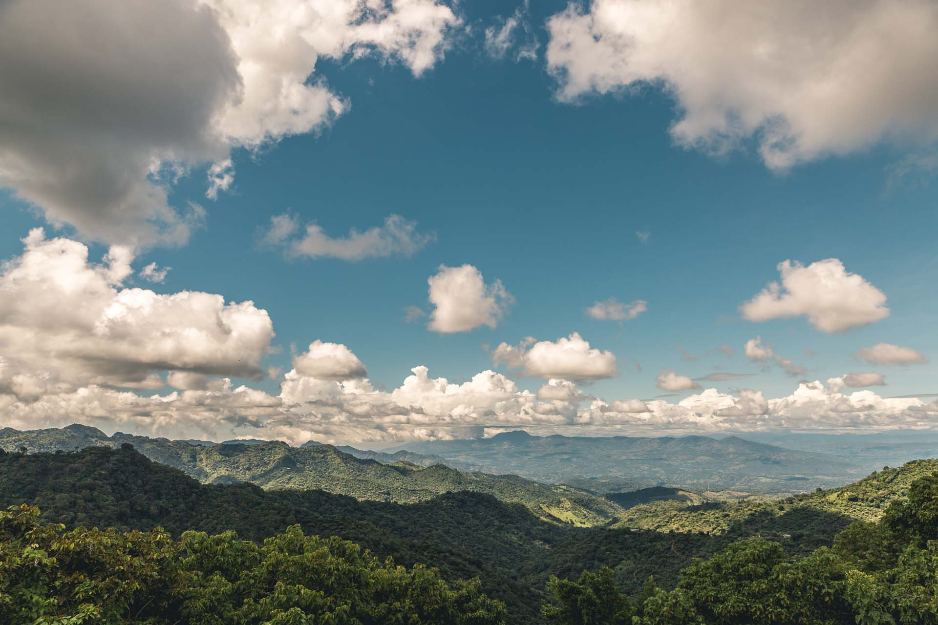 This one overlooking thousands of coffee trees as well as the border of Guatemala.