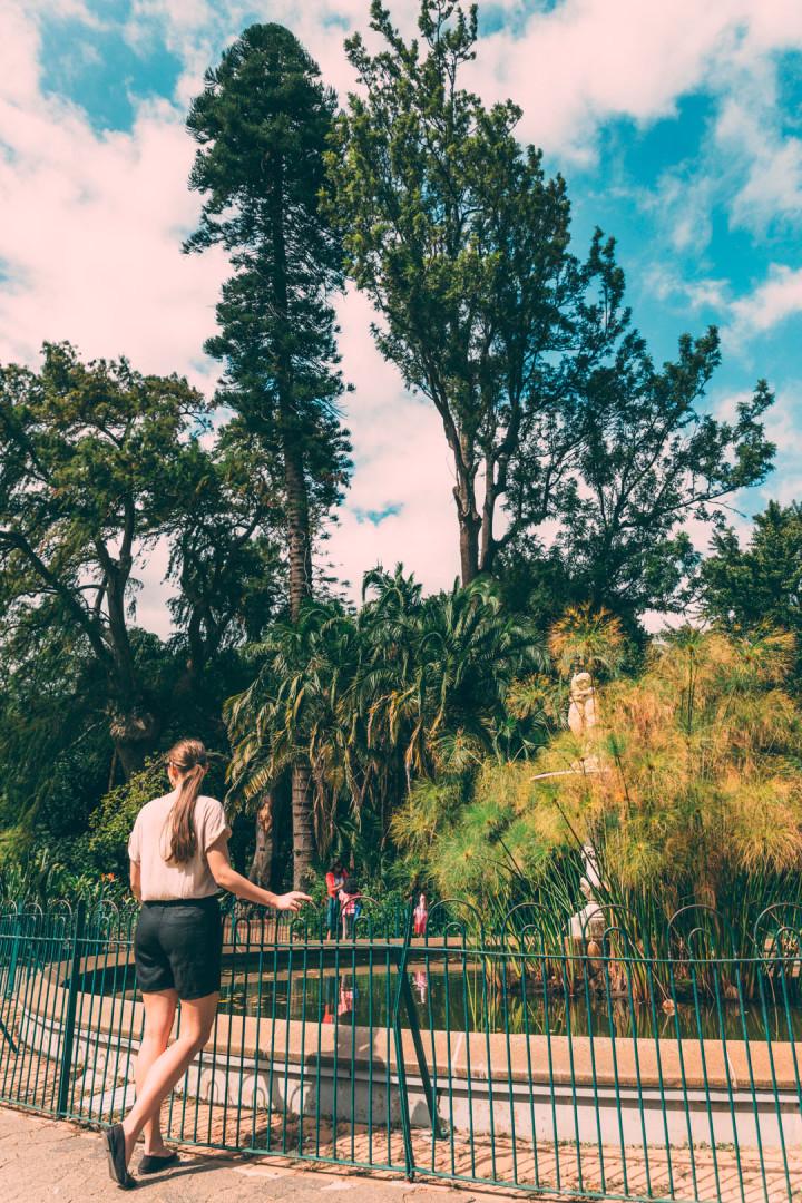 Company Gardens in Cape Town.
