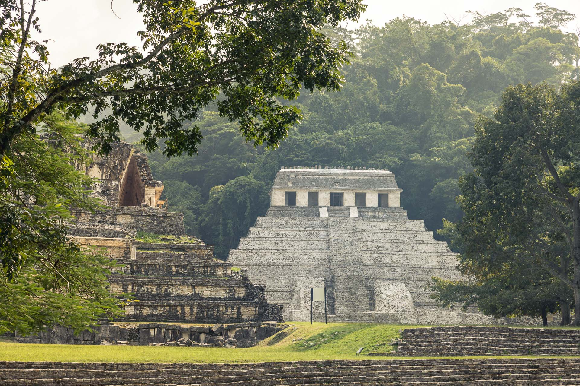 I really loved the Palenque ruins. Easily my favourite old things in Mexico.