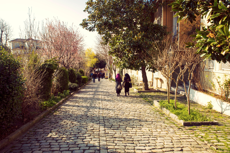 A quiet street behind Hagia Sophia.